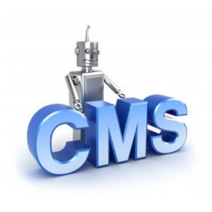 build custom cms