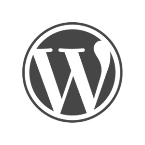 Wordpress development and customization company