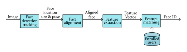 Structure of a face recognition system