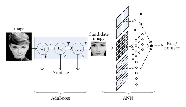 The process of detecting faces of ABANN and Networks